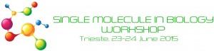 Single Molecule in Biology